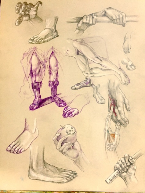 Studies taken after the antique and from life, 2016, graphite/colored pencil on paper