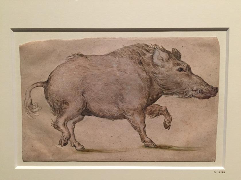 boar-lacma-copy